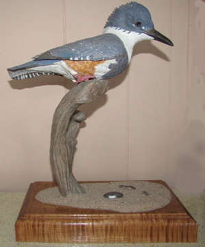 Belted Kingfisher - $550